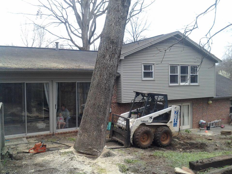 Our portfolio dans exterior home services dehs tree care services - Exterior home services ...